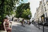 Des arbres pour sauver Paris du réchauffement?