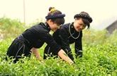 L'autonomisation économique des femmes d'ethnies minoritaires grâce à la technologie 4.0