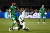 Sénégal-Algérie, des décennies d'attente pour une finale de rêve