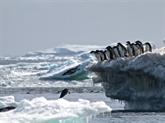 En Antarctique, 2014 fut une année charnière