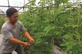 Il devient milliardaire grâce à la culture de légumes bio