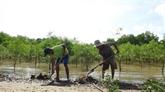 Trà Vinh: investissement dans le développement des régions d'ethnies minoritaires