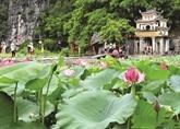 La pagode de Bich Dông à la saison des lotus