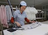 Le Vietnam exporte 9,68 mds de dollars de biens vers le Japon