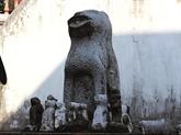Des chiens de garde en pierre à Hanoï