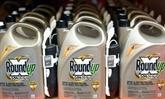 Glyphosate: le médiateur dément une offre de transaction par Bayer