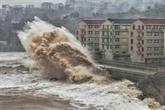Le typhon Lekima fait 30 morts dans l'Est de la Chine