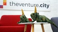 Avec ses iguanacornes, Miami se rêve en nouvelle Silicon Valley