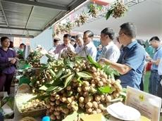Exportations de fruits et légumes en hausse de 0,13% en sept mois