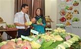 Perspectives de coopération commerciale Cân Tho et Hiroshima