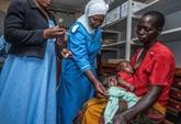L'OMS appelle à investir massivement dans la lutte contre le paludisme