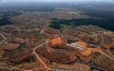 L'Indonésie va transférer sa capitale sur l'île de Bornéo