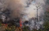 Incendies en Amazonie: Bolsonaro autorise l'envoi de l'armée