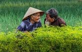 Une photo vietnamienne entre dans le Top 50 du concours international # Love2019