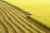Le titre ''Label agricole d'or du Vietnam 2019