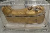L'Égypte présente un sarcophage de Toutânkhamon en restauration