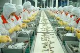 Une usine japonaise de traitement des carapaces de crevettes sera construite à Cân Tho