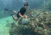 La plongée sous-marine pour nettoyer la mer à Dà Nang