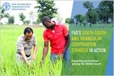 FAO: la mécanisation stimule le développement durable de l'Afrique