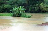 De fortes pluies causent de lourds dégâts dans le Nord