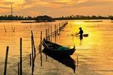 Découverte du marais de Thi Tuong