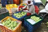 Le CPTPP favorise le commerce extérieur du Vietnam
