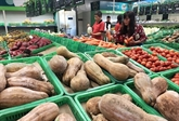 Stimuler les exportations durables de produits agricoles et aquatiques vers la Chine