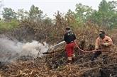 Fermeture forcée des écoles et aéroports à cause des incendies de forêt