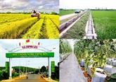 Bonnes récoltes dans le Nam Bô oriental et le delta du Mékong