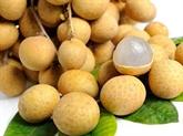 Les fruits vietnamiens sont exportés vers des marchés exigeants