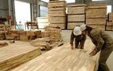 Bond de plus de 18% des exportations de produits forestiers durant les huit premiers mois