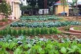 Le Vietnam compte plus de 76.600 hectares consacrés à l'agriculture biologique