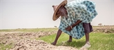 ONU : en 2020, des millions de personnes seront confrontées à la faim