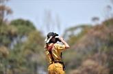 Incendies en Australie : une nouvelle vague de chaleur redoutée
