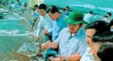 Des entreprises japonaises souhaitent investir dans l'agriculture high-tech à Bac Liêu