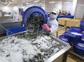 Le delta du Mékong table sur 1,1 million de tonnes de crevettes d'ici 2025