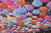 Les parapluies de Van Phuc font tourner les têtes