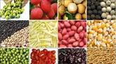 Vietnam et Japon coopèrent sur la chaîne de valeur alimentaire