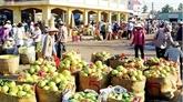 Vietnam - Chine : près de 117 milliards de dollars de commerce bilatéral