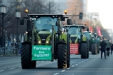 En Allemagne, lurgence écologique se heurte au malaise paysan