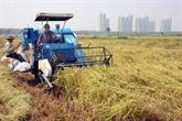 Le secteur agricole vise une croissance de 2,91% à 3% en 2020