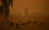Australie : tempête de poussière et averse de grêle