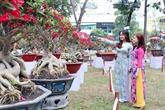 L'ouverture de la fête des fleurs printanières de Hô Chi Minh-Ville