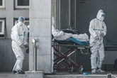 L'épidémie touche les grandes villes, la transmission entre humains confirmée