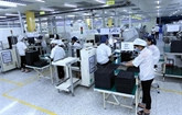 Forte hausse dIDE au Vietnam en janvier