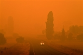 Australie : des stars se mobilisent pour aider les victimes des incendies