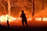 Australie : les pompiers redoublent d'efforts avant la prochaine vague de chaleur