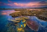 Lancement du 9e concours de photos d'art sur le tourisme au Vietnam