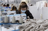 L'Allemagne, partenaire commercial le plus important du Vietnam au sein de l'UE