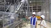 IDE : Long An développe des grappes industrielles